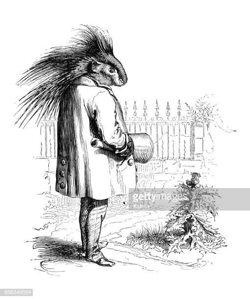 humanized animals illustrations porcupine