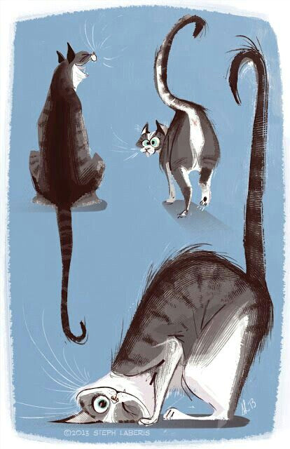 mi tablero body art pinterest cat illustrations and animal