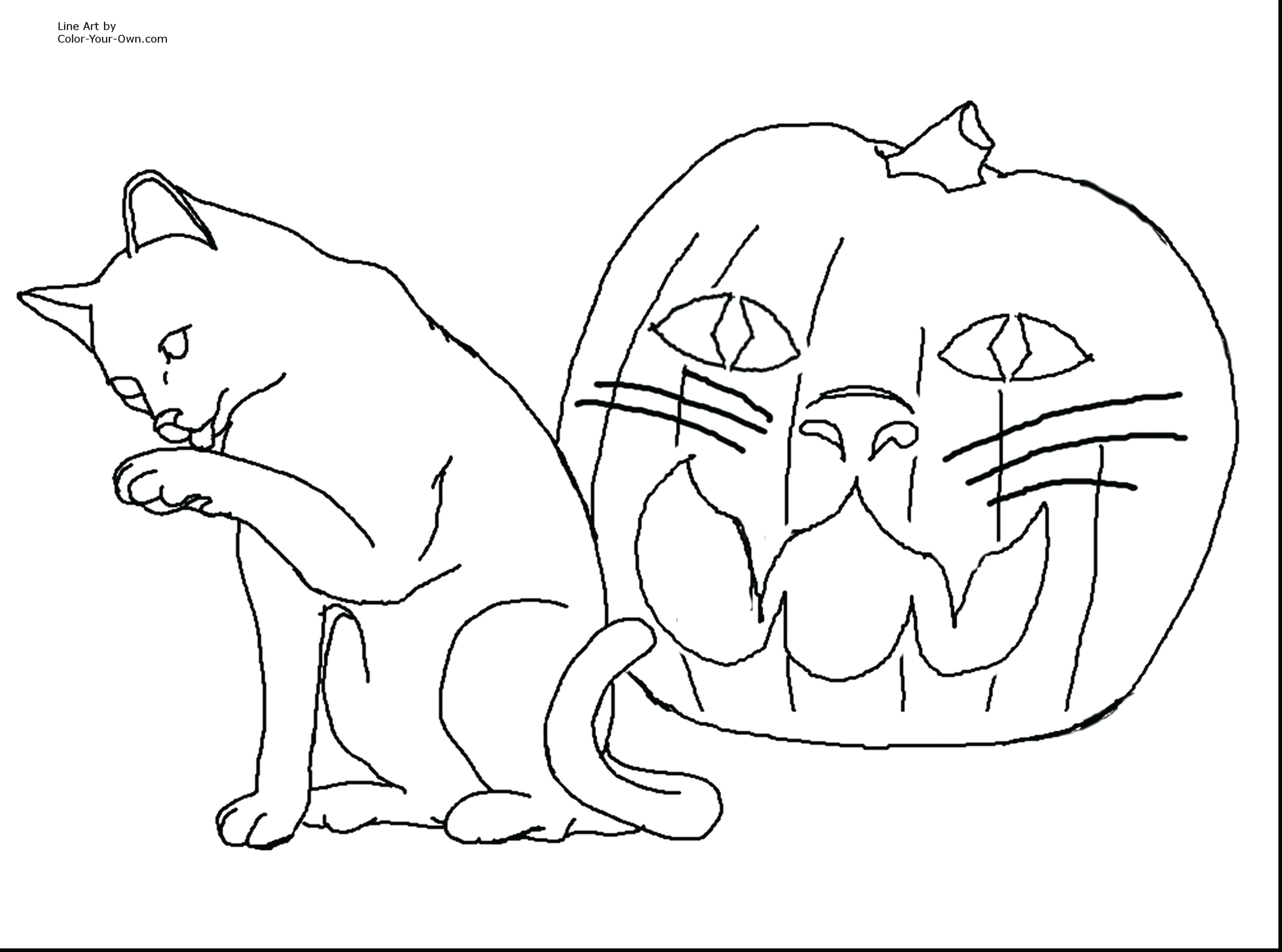 coloring pages of animals preschool color pages animals luxury drawing printables 0d archives se