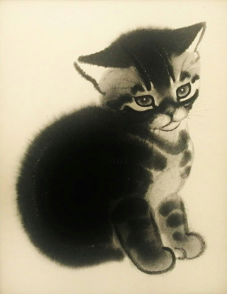 Drawing A Cat Newberry Clare Turlay Newberry Google Search Cat Lady Cat Art Cats