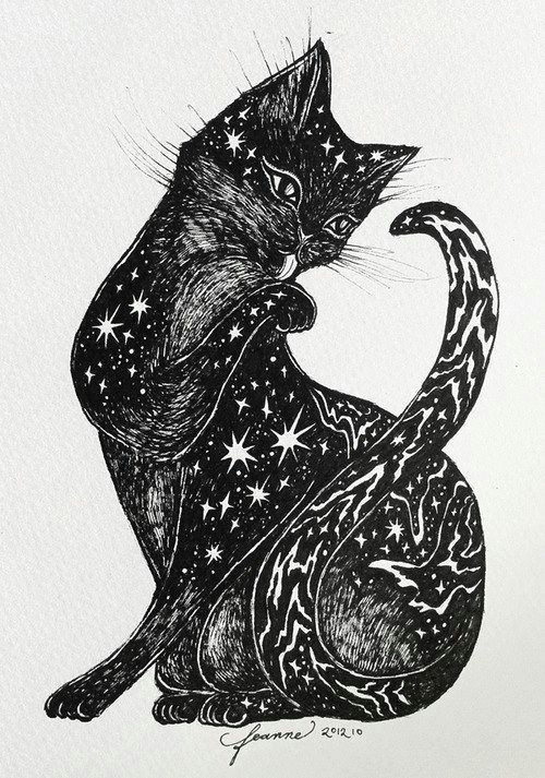 galaxy cat black cats black cat