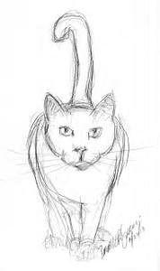 easy cat drawings in pencil wallpapers gallery
