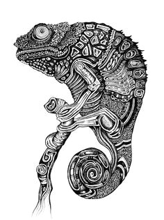 buy chameleon by ejaculesc as a high quality framed art print worldwide shipping available at