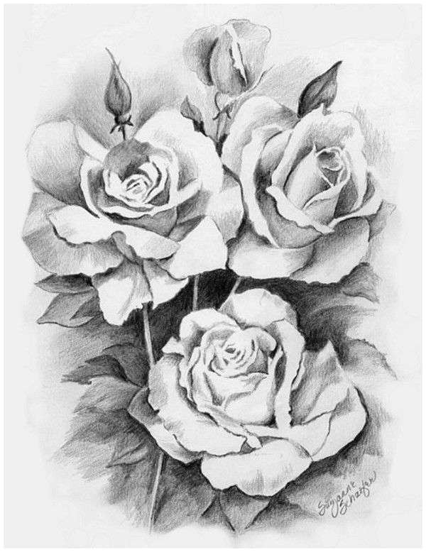 closed rose drawing awesome s s media cache ak0 pinimg originals 89 0d 6b drawing roses