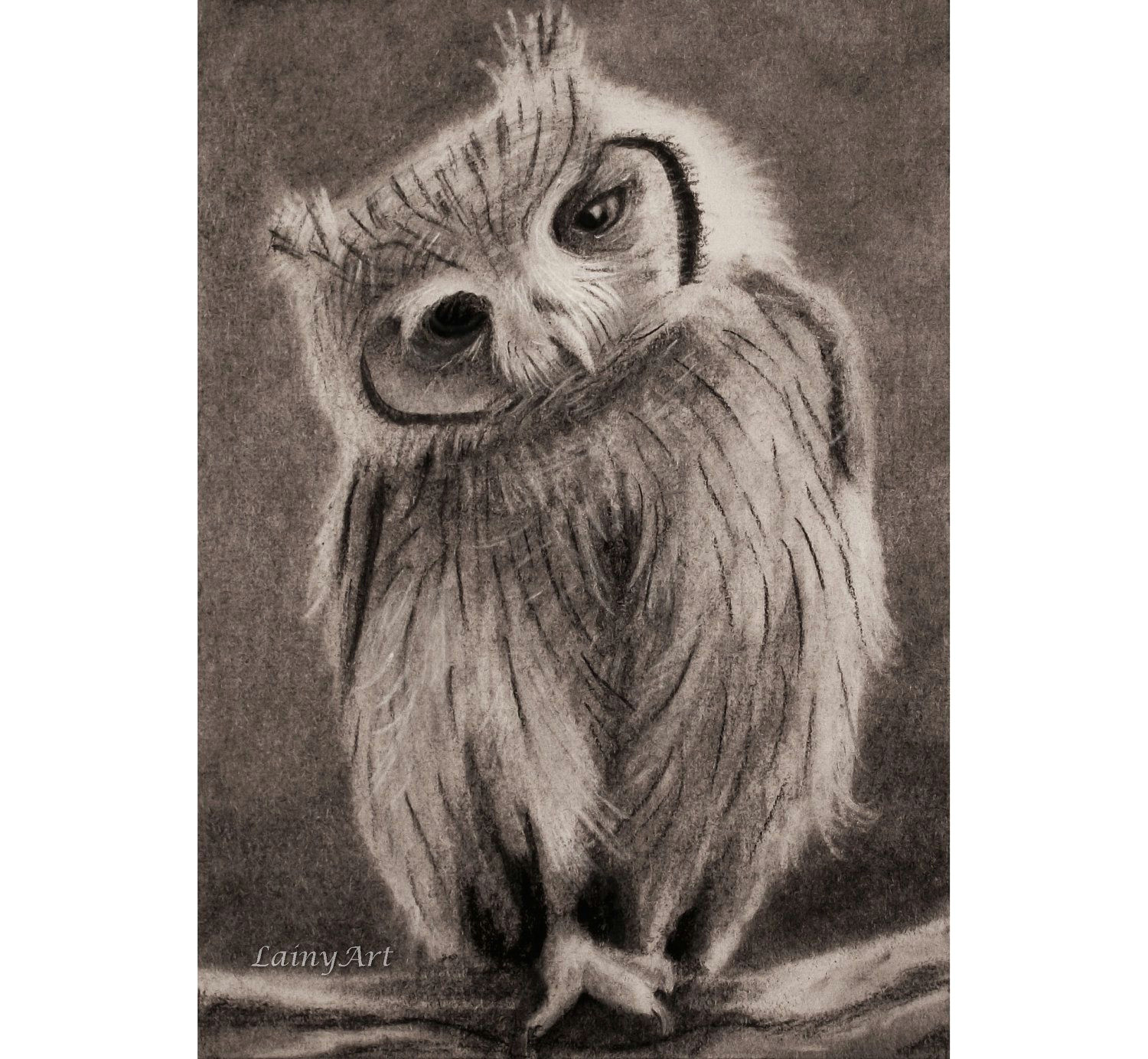 cute owl drawing aceo charcoal original all by lainyart 11 00