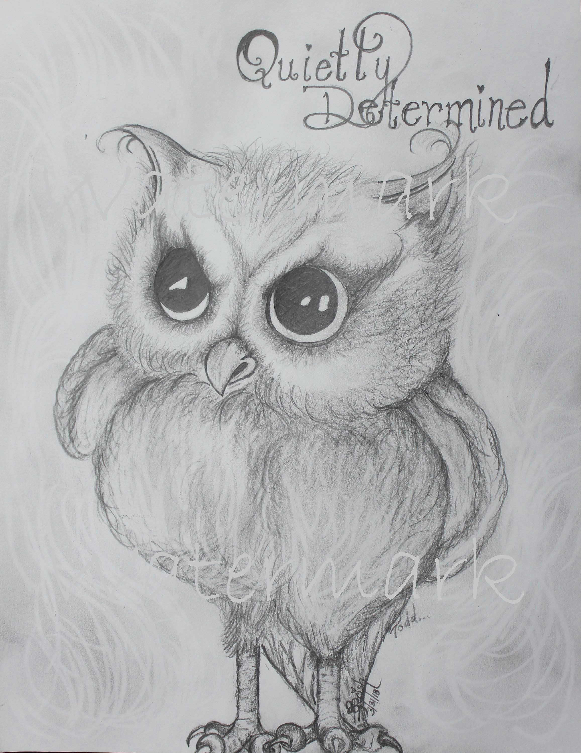 Drawing A Cute Owl Cute Quietly Determined Owl Cute Owl Print Determined Owl Sketch