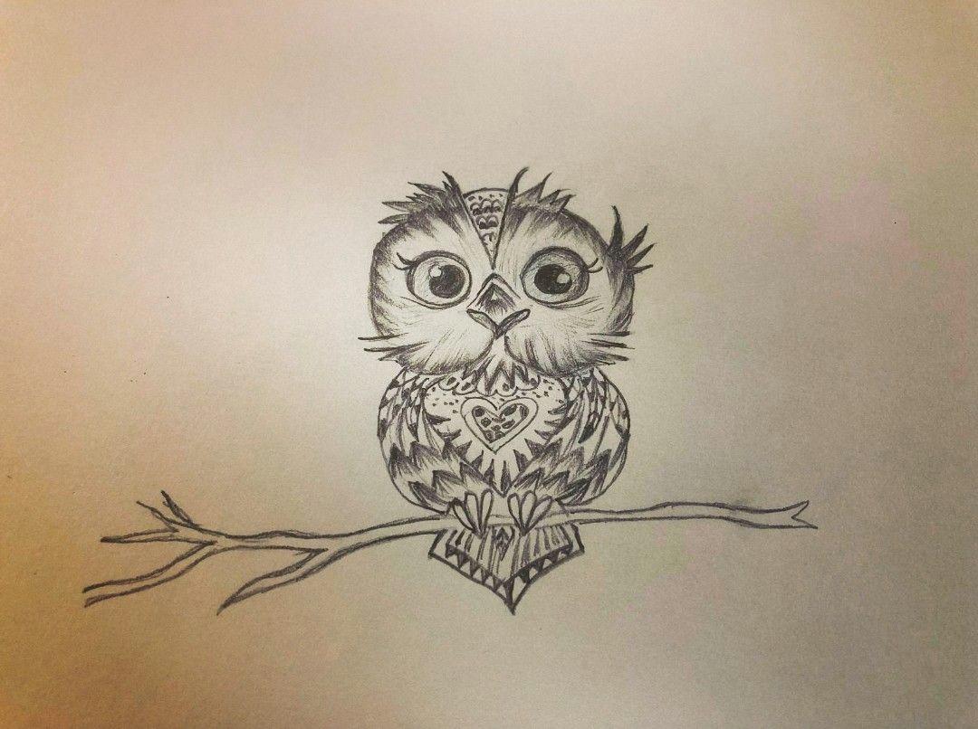 cute owl sketches drawings sketch sketching