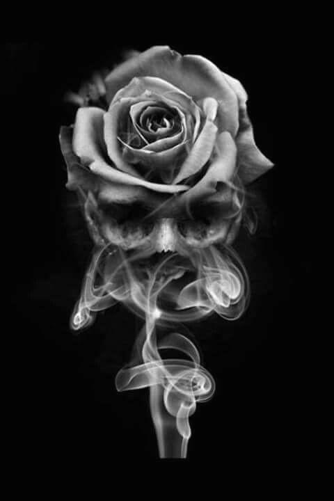 smoke skull rose