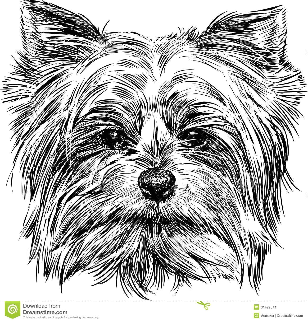 vector portrait graphic design art all design dog vector vector free