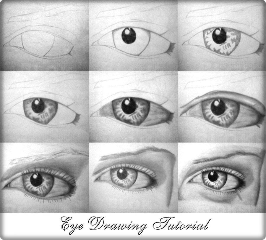 eye drawing tutorial by alexmahone deviantart com on deviantart