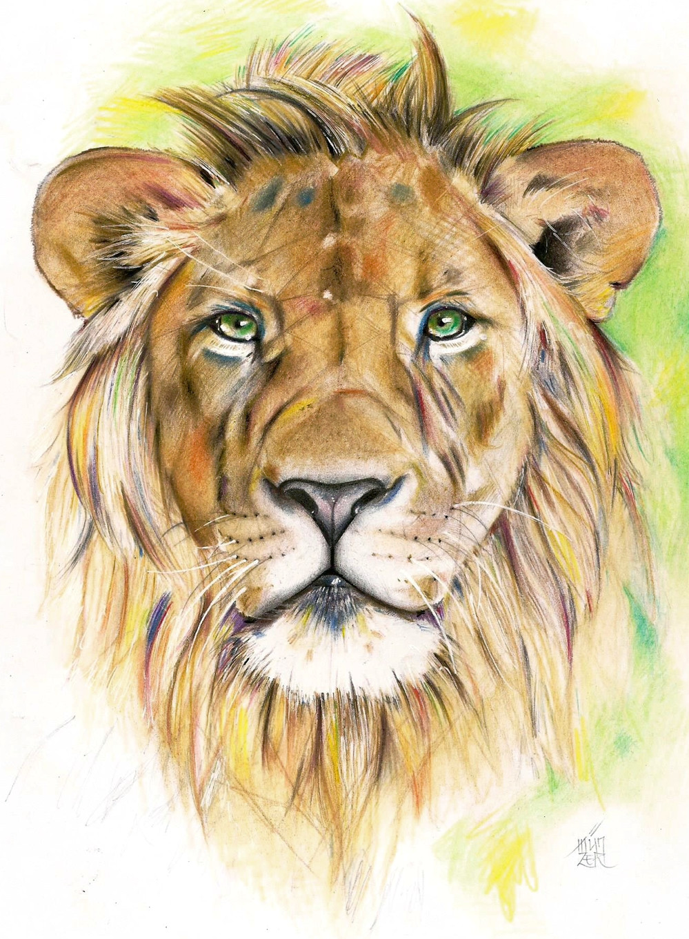 colored pencils drawing a4 love drawings pencil drawings lion art drawing lessons
