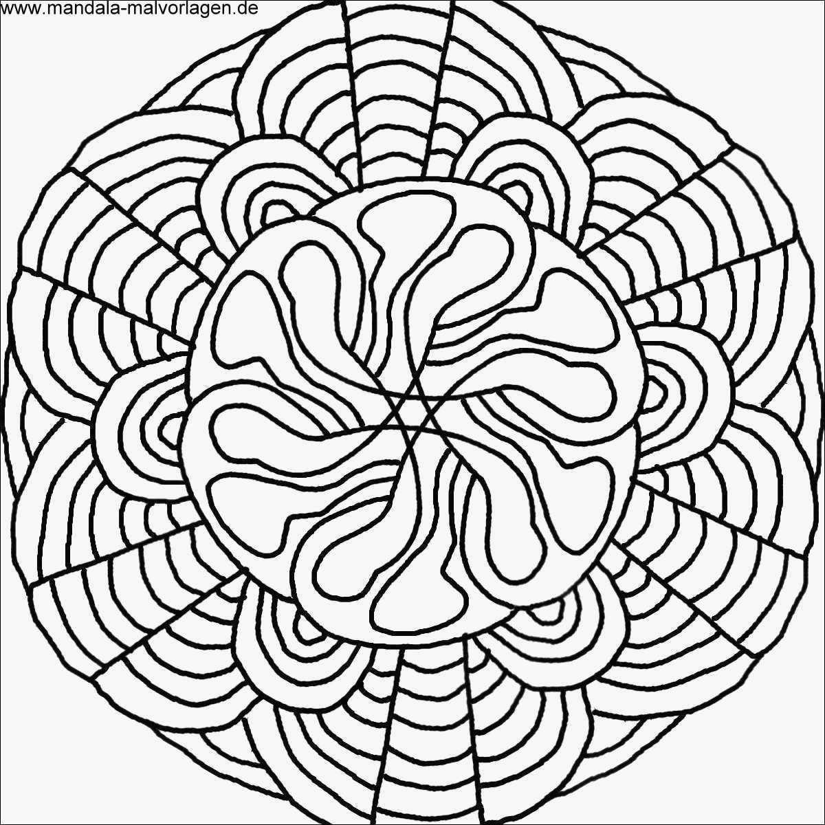 malvorlage rose inspirierend rose herz malvorlage bild lernspiele farbung bilder ausmalbilder bild