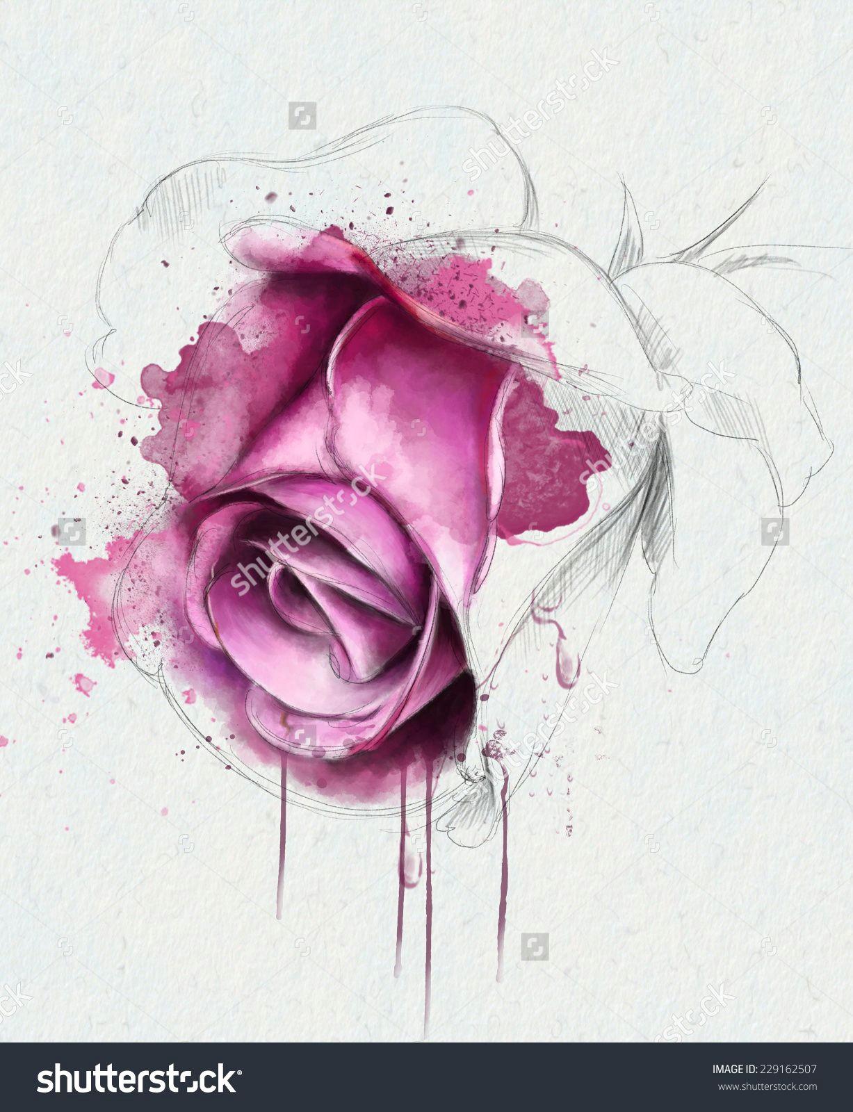 watercolor rose google zoeken