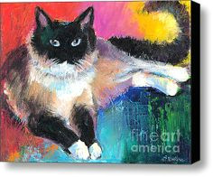 cat canvas art colorful ragdoll cat painting stretched canvas print canvas art by