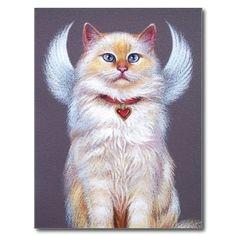 valentines angel ragdoll cat post cards white ragdoll cat ragdoll cats kitty