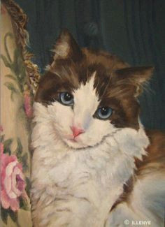 exquisite ragdoll cat on teal moire sofa with floral tapestry pillow oil painting by artist jeanne illenye on dailypainters com