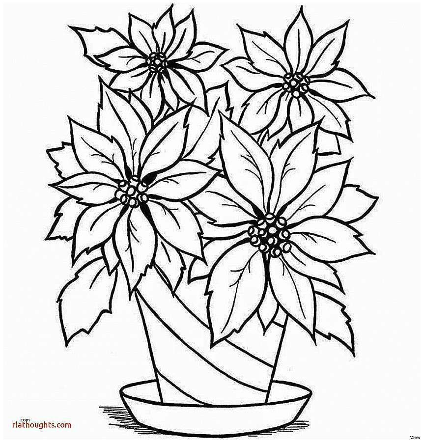 drawn vase pencil drawing 14h vases how to draw flowers in a pin sunflower 3i 0d