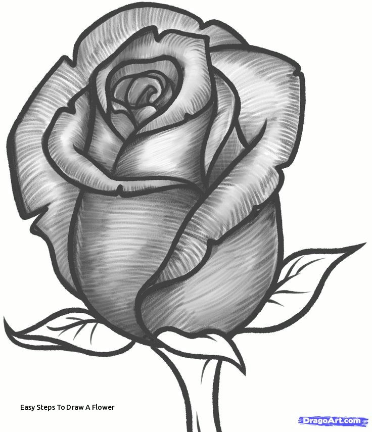 easy steps to draw a flower how to draw a rose bud rose bud step 10