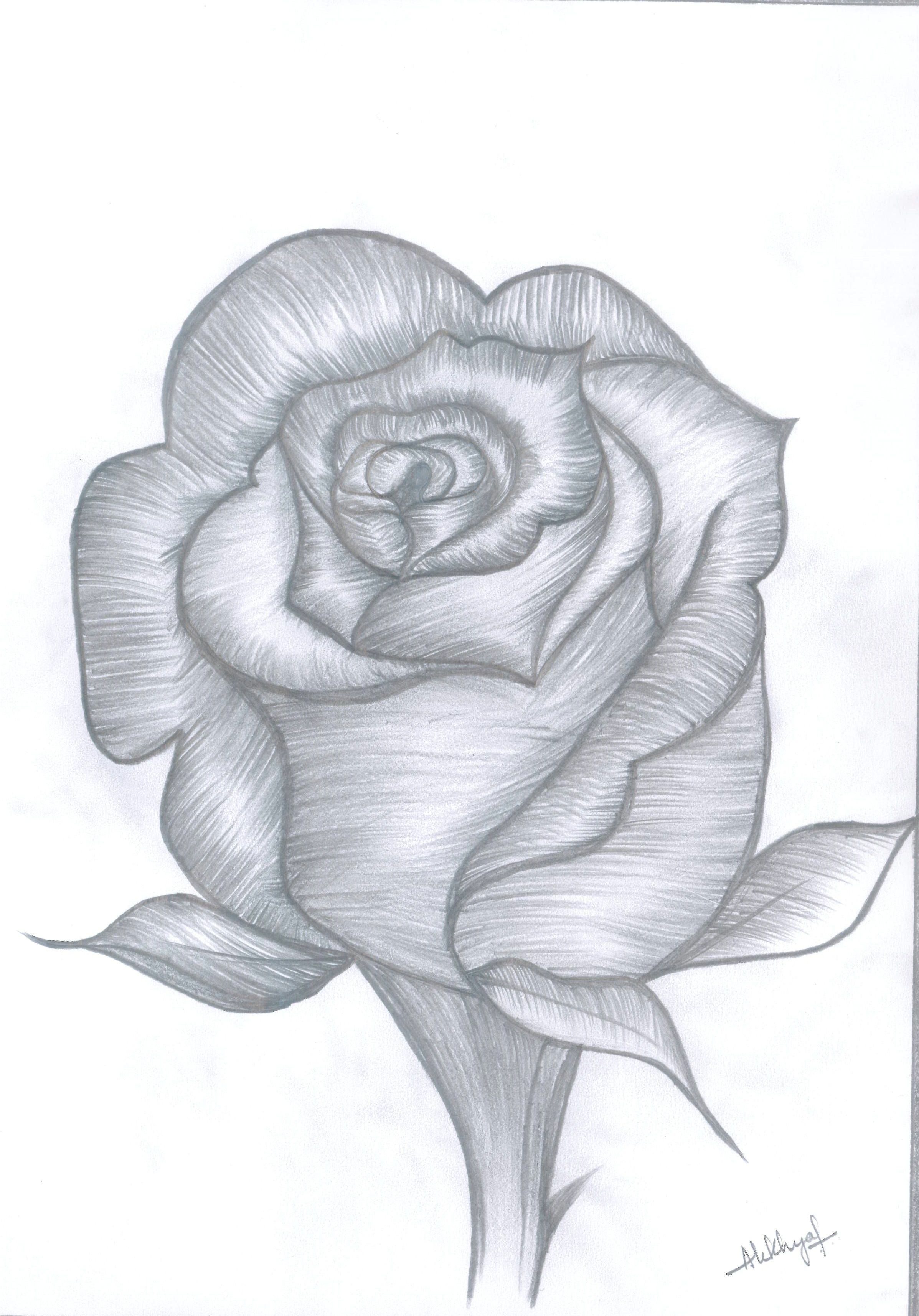 Drawing A Rose Bud Rose Bud Drawings In 2018 Pinterest Draw Rose Buds and Pencil
