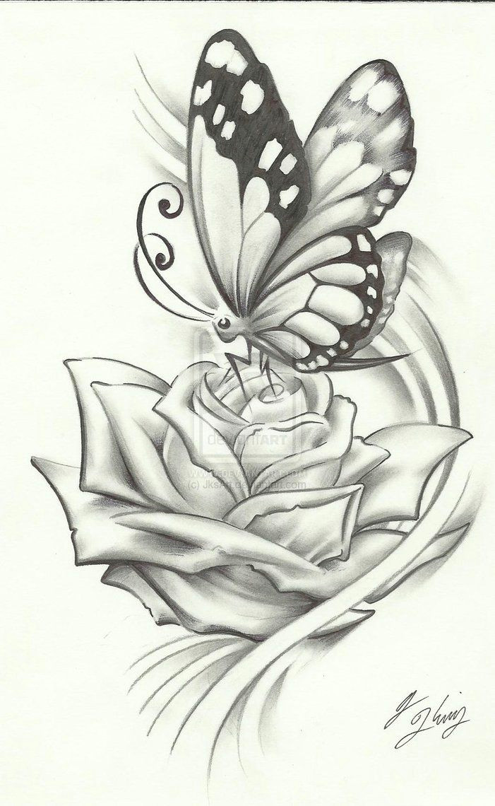 butterfly pencil drawing if it were a dragonfly it would be perfect