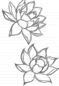 flowers flower drawing art doodle by grounded1 lotus drawing