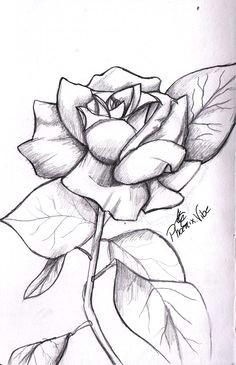 rose drawings in pencil simple rose from my sketchbook enjoy 3 easy drawings