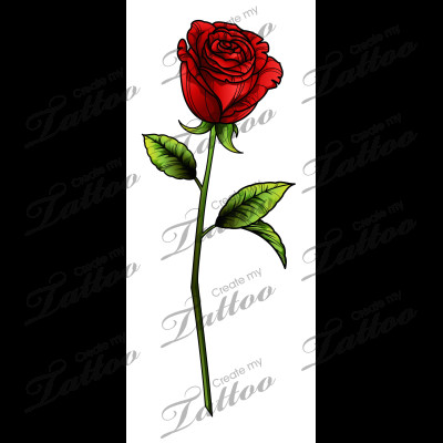 sbink single red rose