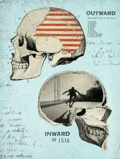 two skulls by laine fraser designer and illustrator anatomy skulls antlers digital