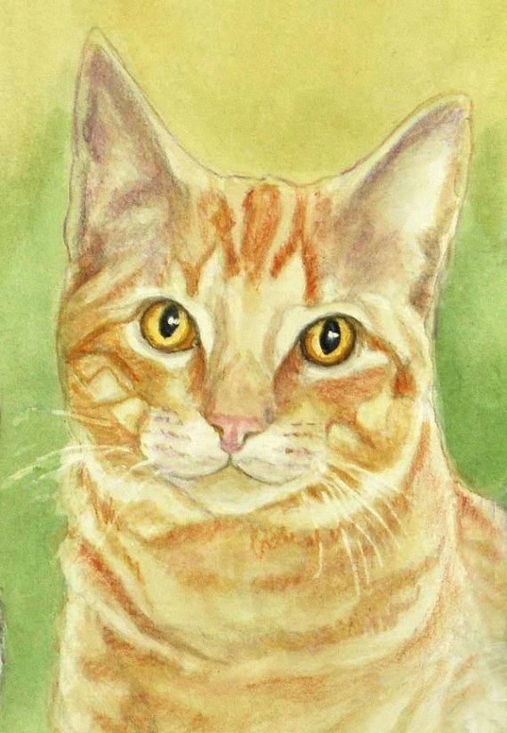 orange tabby cat art print cat watercolor colored pencil print tabby cat art