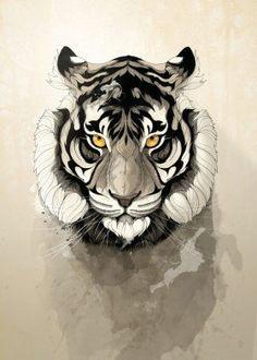 tiger wild nature animal animals free elefant zeichnung geometrische zeichnung wilde katzen tattoo