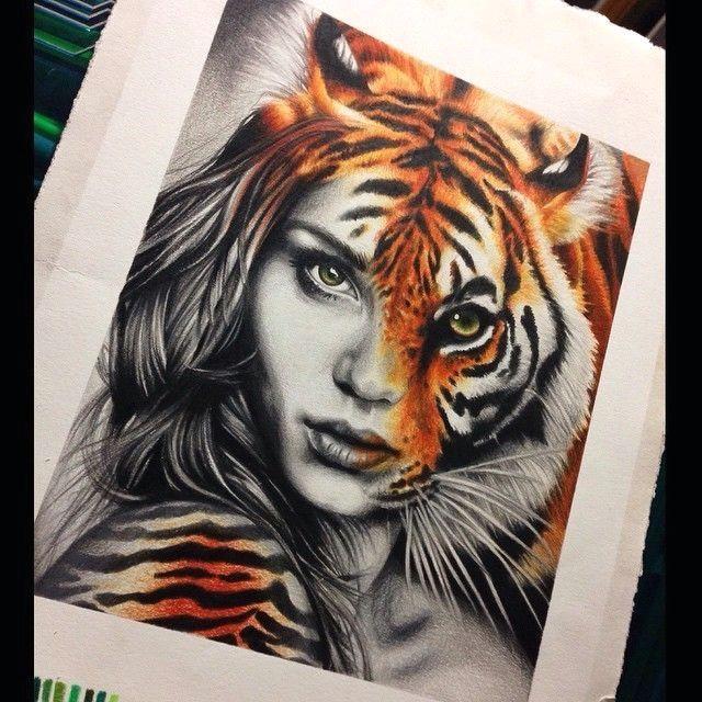 tiger drawing and art image