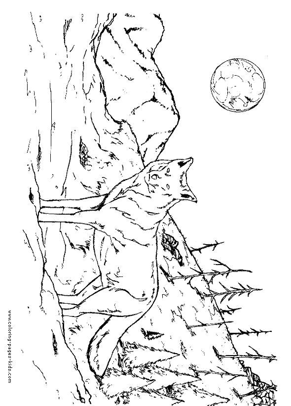 Drawing A Wolf Cub Cubs Coloring Pages Awesome Cool Coloring Page Unique Witch Coloring