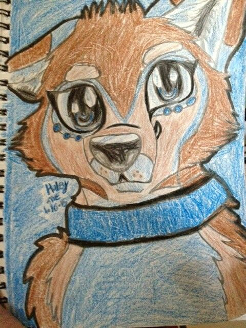 my drawing of a wolf furry of mine named haley 3