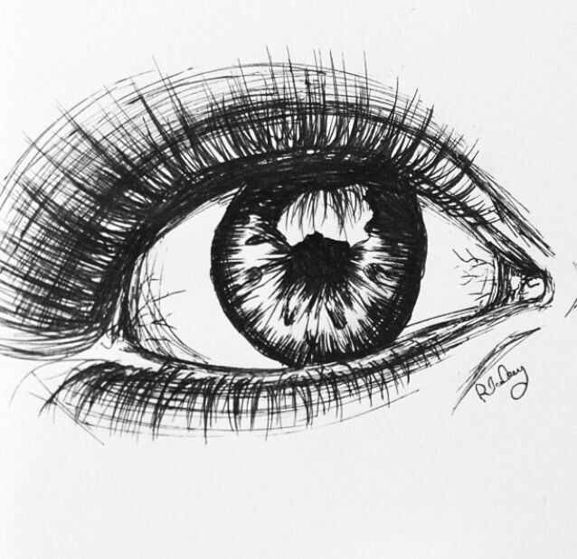 Drawing An Eye In Pen Pen Eye Life Draw Art Drawings Art