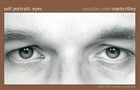 image result for mark crilley realism challenge