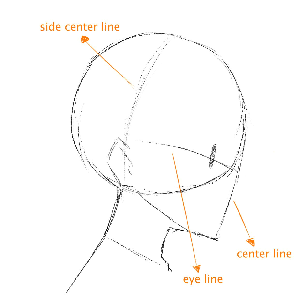 art reference drawing heads drawing poses face side view drawing drawing face shapes