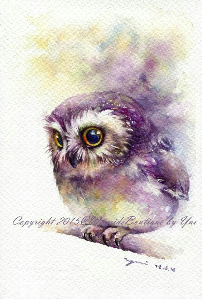 owl watercolour