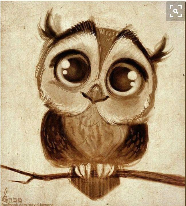 owl drawings cartoon owl drawing cute owl drawing owl cartoon cartoon owl