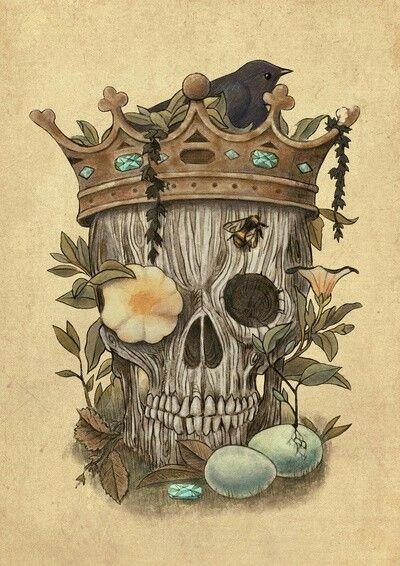 terry fan bird skull skull art terry fan king tattoos popular art