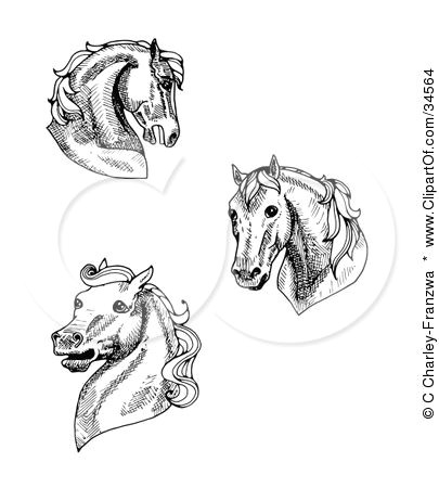 clipart illustration of a set of three black and white horse heads by c charley