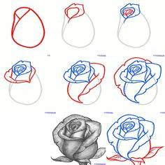 rosen zeichnen rosen zeichnen