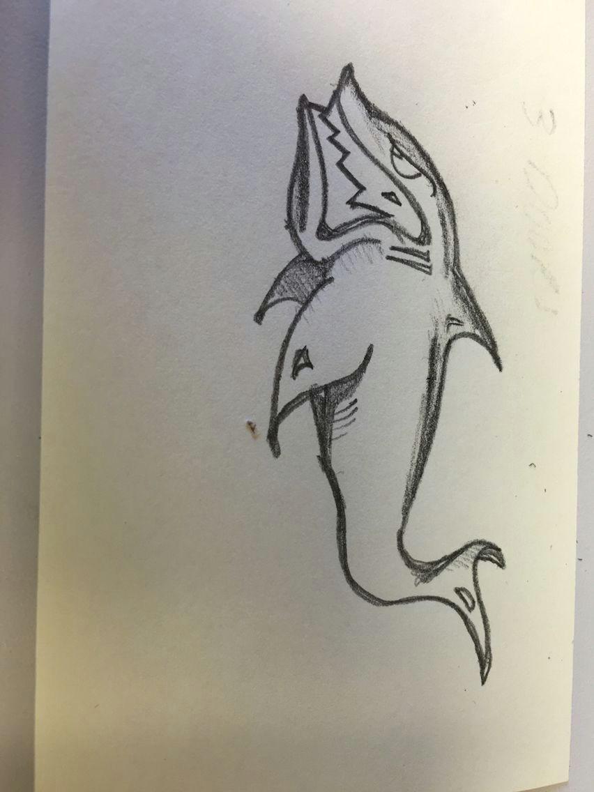 shark drawing cartoon shark