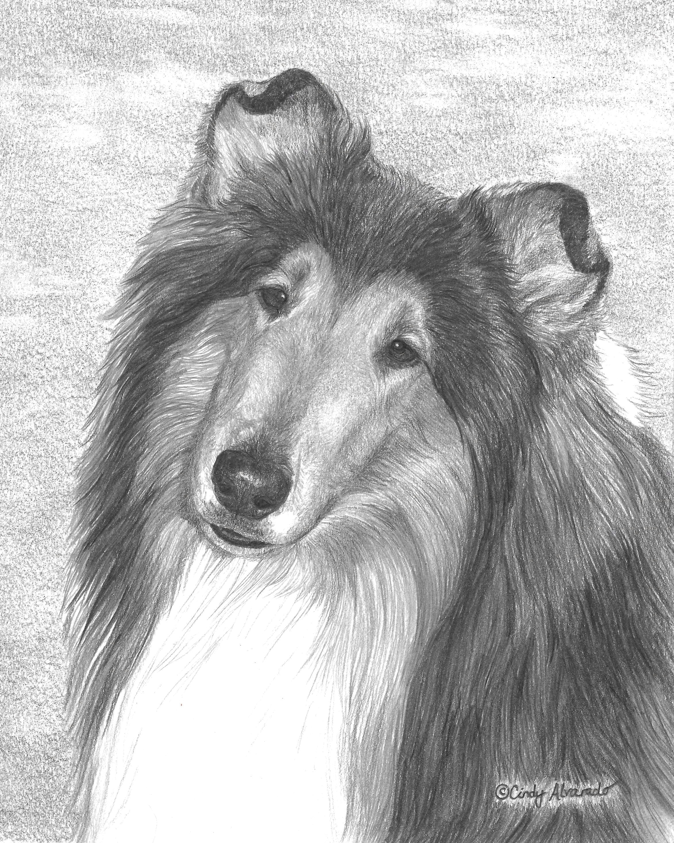 fella portrait commission this is a graphite pencil drawing that i did for a client 8 x 10