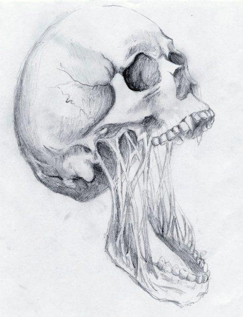 summerdreamz skull drawings badass drawings pencil drawings bone drawing painting drawing