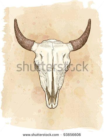 cow skull vector sketch
