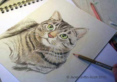 http drawsketch about com od coloredpencil ss