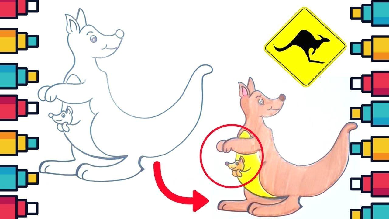 how to draw kangaroo for kids kangaroo cuteanimals drawing coloringpages coloringbooks