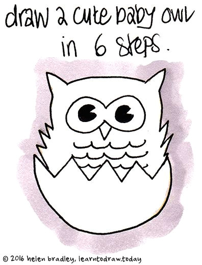 learn to draw a baby owl in 6 steps