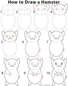 how to draw a hamster step by step instructions for drawing hamster for beginners and