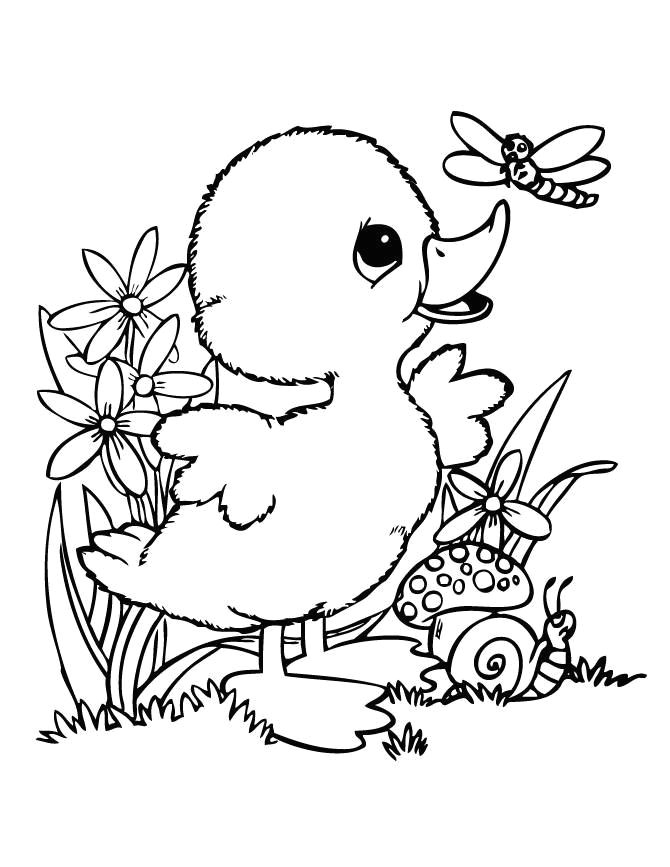 cute coloring pages new leprechaun coloring pages i pinimg 736x 0d 0d ff cute coloring pages